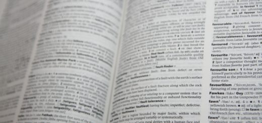 dictionary useful book
