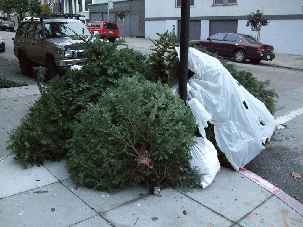 Christmas tree garbage