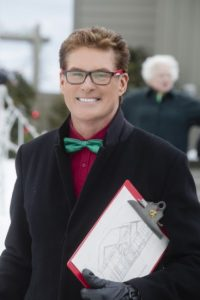 David Hasselhoff The Christmas Consultant movie