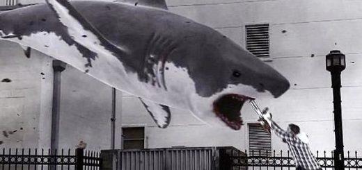 Sharknado 2013 Ian Ziering