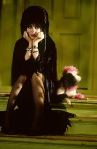 Elvira Mistress of the Dark horror comedy 1988 movie