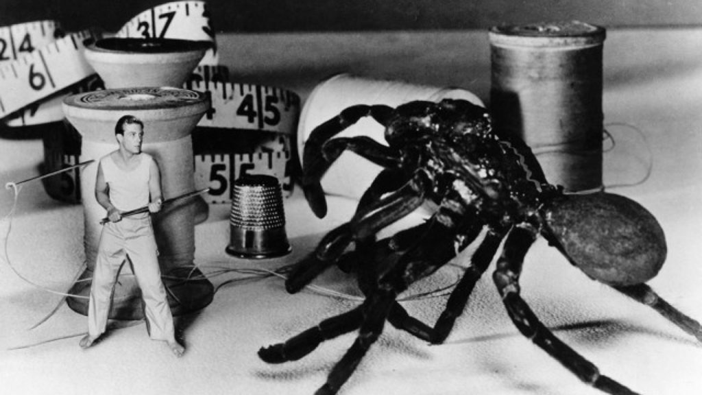 The Incredible Shrinking Man 1957 sci-fi classic film movie
