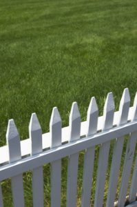 Grass is greener on other side of fence