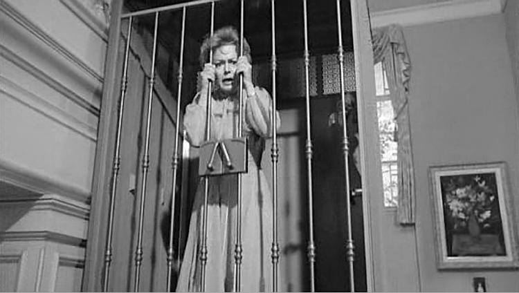 Lady in a Cage 1964 horror movie Olivia DeHavilland