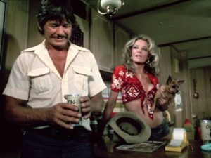 Charles Bronson Sheree North Breakout 1975