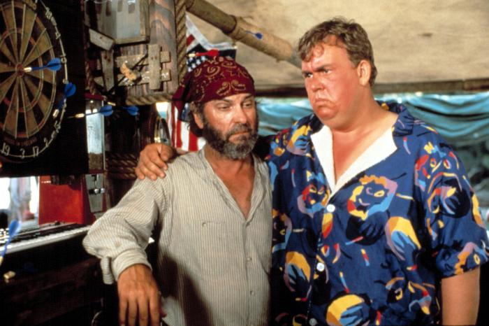 Summer Rental 1985 John Candy Rip Torn comedy