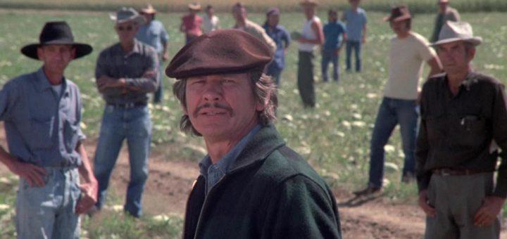 Charles Bronson Mr Majestyk 1974 action movie
