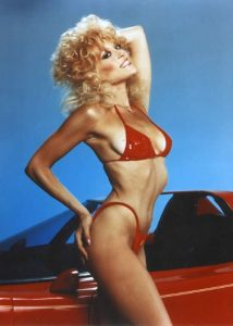 Judy Landers sexy hot 1980s Stewardess School pinup