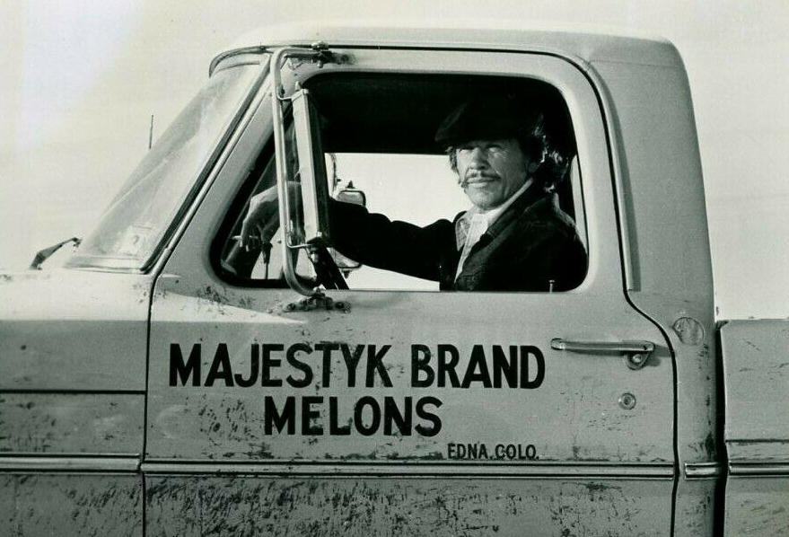 Charles Bronson in Mr Majestyk 1974