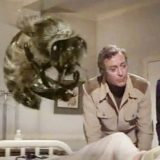 The Swarm 1978 Michael Caine Katherine Ross bee attack disaster movie